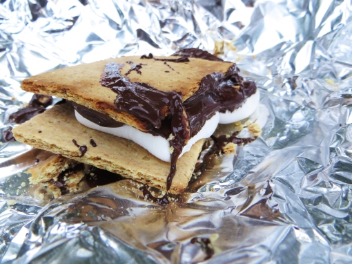 Tinfoil Toasted Dark Chocolate S'mores