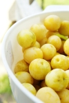 Wild yellow plums are a lot of work! Small with a pit, it takes a while to prepare for jam making.