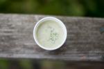 Simple pureed leek soup